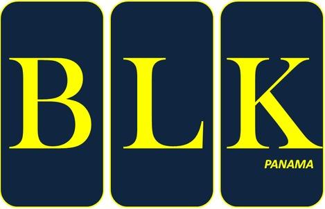 BLK Panamá (Montajes industriales, alquiler de andamios)